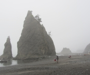 foggy Split Rock