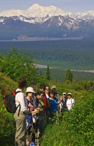 Hot to Globe Trot, Travel, Adventure, Alaska, Curry Ridge, Denali, Lynnwood, WA